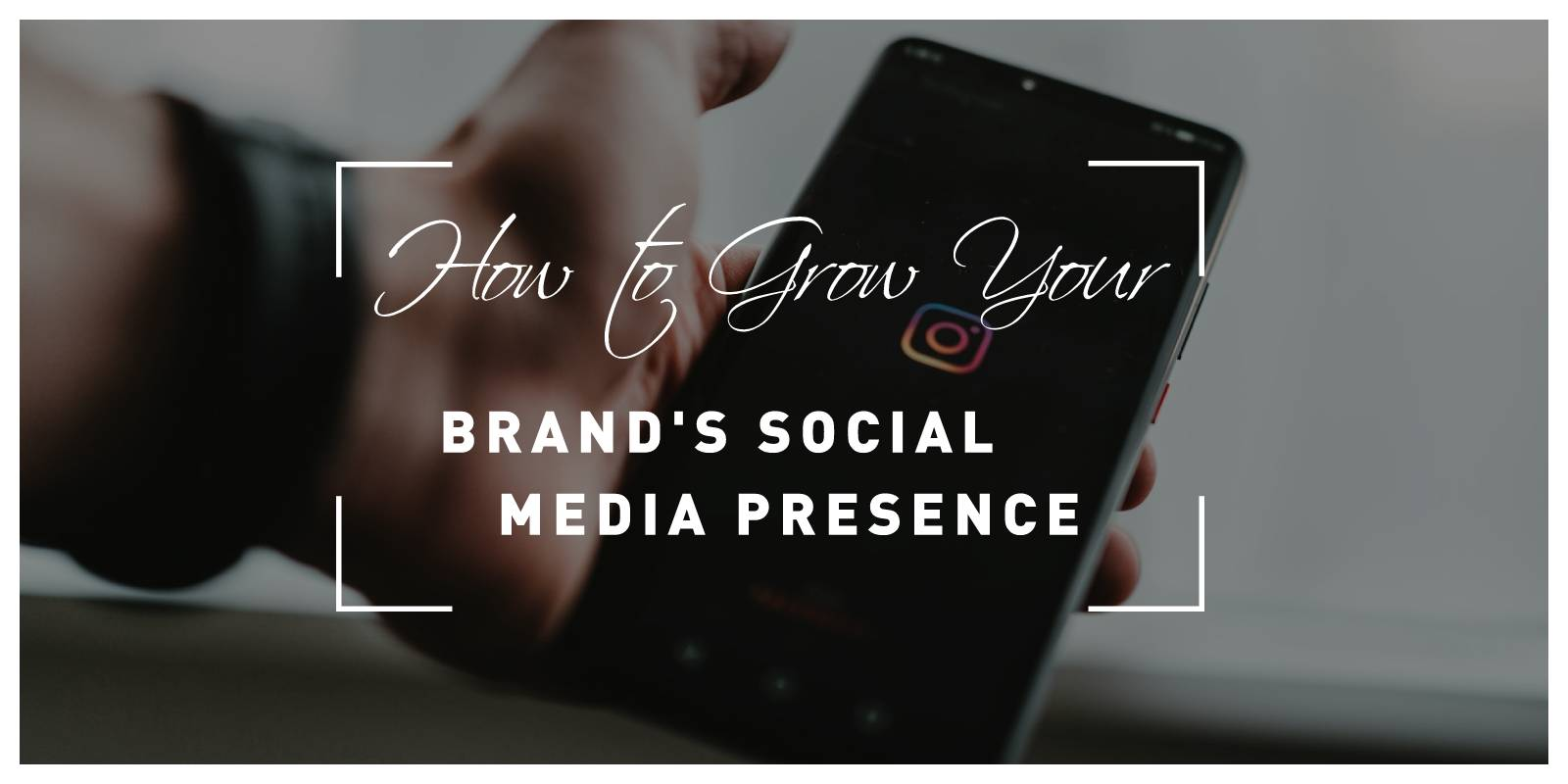 How to Grow Your Brand's Social Media Presence
